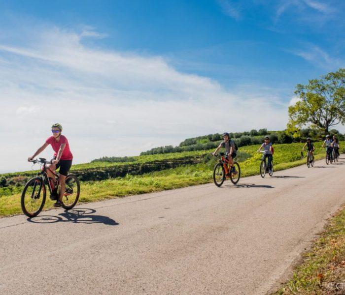 In bici sulla strada del durello