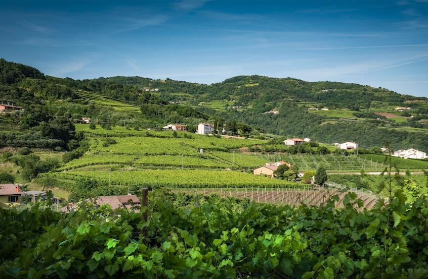 Da Paesaggio a Patrimonio: la Val d'Alpone si prepara ad accogliere i turisti